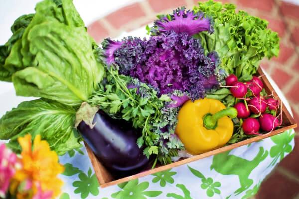 Ernährungsberatung - Forum Gesundheit Völklingen